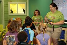 Education and Camps at the Aquarium / The Florida Aquarium entertains and educates hundreds of campers each year both in the Carol J. and Barney Barnett Learning Center located at the Aquarium and at sites around the state of Florida!
