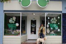 layouts para pet shops