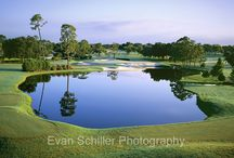 PGA Tour venues / This is a collection golf courses the PGA Tour hosts their tournaments on