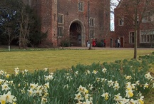 Winter Gardens and Snowdrops / Winter Gardens and Snowdrops at Hodsock Priory