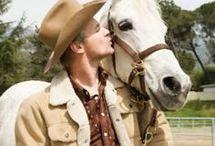 HorsesHorsesHorses