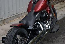 Harley softail