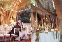 Enchanted Forest Wedding & Party Theme / This mood board is a collection of inspiring ideas to help you plan and decorate for an outdoors wedding or party set in a forest... all things natural, organic, rustic to fit this enchanted forest woodland theme.