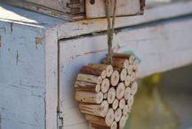 Dřevo, korek