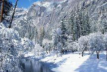 National Park of Yosemite