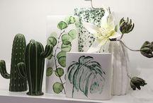 Green Lifestyle - Kaktus