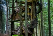 Tree Houses / by Sharon B