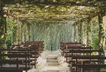 Genevieve's wedding ideas