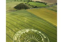 Crop circles / by Alexandra Cortese