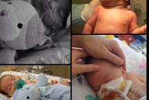 CHD Babies / by Combat Mom