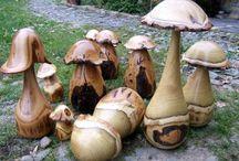 forêt de champignons
