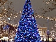 Christmas / Cool Christmas ideas