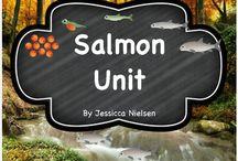 Salmon Stuff