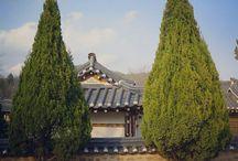Korea Travel / Korea landscape