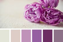 Spring 2014 Color - Radiant Orchid