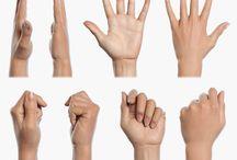 референсы (руки)