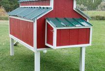 chicken coop / run