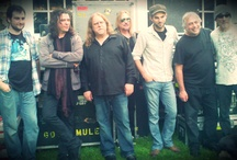 Gov't Mule at Carriage House Studios