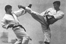 Karate - Technique