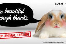 No animal testing needed / Be pretty outside and inside without animal testing