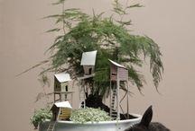 Planten / groen in je woonkamer