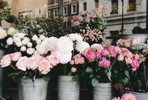 If I Had a Flower Shop / one day when I hope to own a flower shop.
