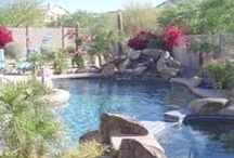 What would look nice in my backyard