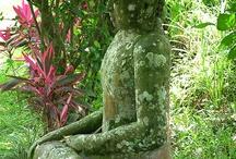 Bali ♥ / by Carolin Roesch