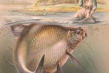 рыбалка тематика
