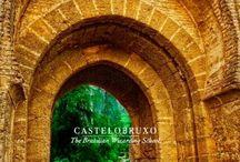 Castelobruxo - Wizarding Schools / - aesthetic Wizarding schools around the world: Brazil