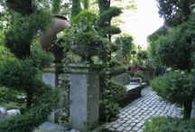 Outdoor spaces and lanscaping / by Andrea Solek