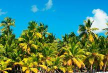 Dominika / Fehérhomokos tengerpartjai, zöldellő pálmafái, buja növényzete, nemzeti parkjai, türkizkék, kristálytiszta tengere és a sziget barátságos lakói garantáltan jó emléket hagynak az idelátogatók szívében, így szinte biztos, hogy visszatérő vendégek lesznek.Dominikán található a világ második legnagyobb forró tava.