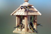 mangeoires oiseaux / Choisir une mangeoire pour oiseaux : observer quels oiseaux fréquentent votre jardin pour faire le bon choix.
