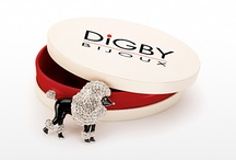 Digby fashion jewelry / by Marie Saunders