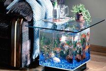 Aquarium / .