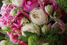 weddings / by Vicki Lane