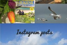 The blog - Norfolk Coastal Holidays / Our blog - all about Norfolk, our properties, places we visit