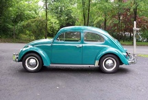 vw bettles / by Claire Johnson