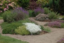 Herb Garden Inspirations / Herb gardens from around the world that can inspire our own gardens.