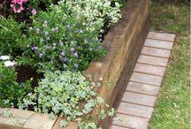 Garden / Gardening ideas
