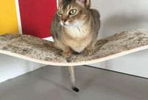 chaise longue for cats by HolinDesign / Our special design for cats: scratcher and couch in one. Chaise longue is made from plywood and birch veener.