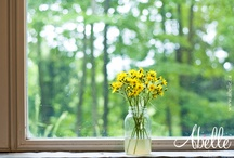 Shabby chic / Detail shots of a wonderful springtime country wedding / by Abelle photographie
