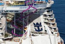 Cruise Dream