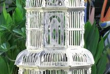 Birdcages / by Gloria Watson