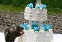 wedding - cake / by Sloths Are Fuzzy