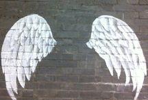 Wings Graffite