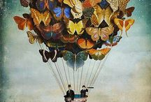 butterflies / by Catherine Howell