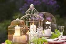 Outdoor Decor / by Brie Denise
