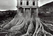 Vol 8 Masters of Photography / Vol 8 Masters of Photography: Jerry Uelsmann, Max Waldman, Edward Weston, Minor White, Garry Winogrand, Lothar Wolleh