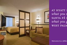 #hotels / by Peter & Daphne Willington